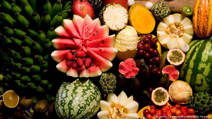 Bildergalerie Wassermelone Kunst