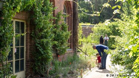A view of a garden that's flanked by a brick building. A grandfather shows his grandchild the various plants. (Foto: DW/Klaus Esterluß)