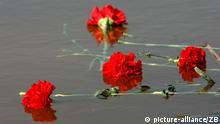 Rote Nelken schwimmen am Sonntag (17.04.2005) vor dem Mahnmal der Gedenkstätte des früheren Konzentrationslagers Ravensbrück bei Fürstenberg auf dem See der Tränen, in den die Asche der ermordeten Häftlinge gekippt worden war. Bei einer Gedenkveranstaltung wird an den 60. Jahrestags der Befreiung des Lagers gedacht. Zwischen 1939 und 1945 sind 132.000 Frauen und Kinder, 20.000 Männer und 1.000 Mädchen des Jugendschutzlagers Uckermark als Häftlinge registriert worden. Foto: Jens Büttner +++(c) dpa - Report+++
