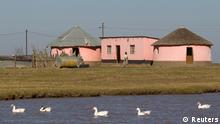 Geese swim by a dam near the home of former South African President Nelson Mandela in Qunu, June 12, 2013. Mandela's condition remained unchanged at serious but stable, a government spokesman told local radio on Wednesday morning. REUTERS/Rogan Ward (SOUTH AFRICA - Tags: POLITICS ANIMALS SOCIETY)