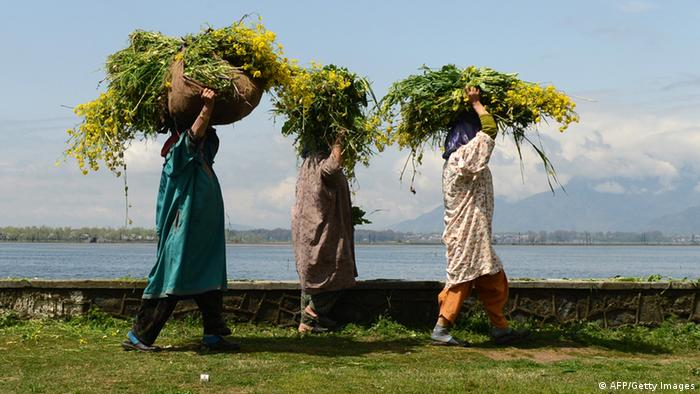 Kashmiri labourers carry fodder for cattle as they walk on the edge of Dal Lake on the outskirts of Srinagar on April 3, 2013. Tourists arrivals are picking up after a sharp fall in the wake of protests over the hanging of Kashmiri activist Afzal Guru in February, for an attack on India's parliament in 2001. AFP PHOTO/Tauseef MUSTAFA (Photo credit should read TAUSEEF MUSTAFA/AFP/Getty Images)