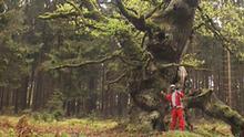 07.2013 DW Euromaxx Wigge Tretroller Folge 10