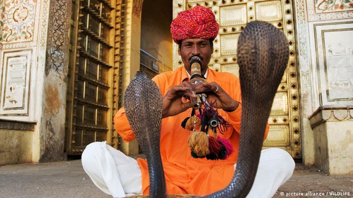 Flötenspieler Schlangenbeschwoerer