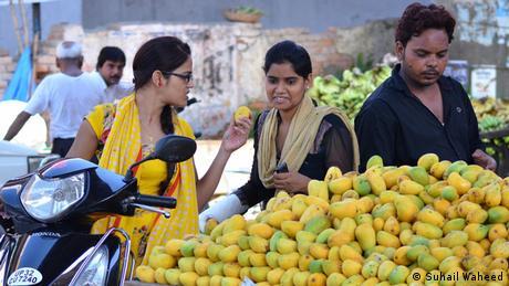 Bildergalerie Mango in Lucknow Indien Frucht