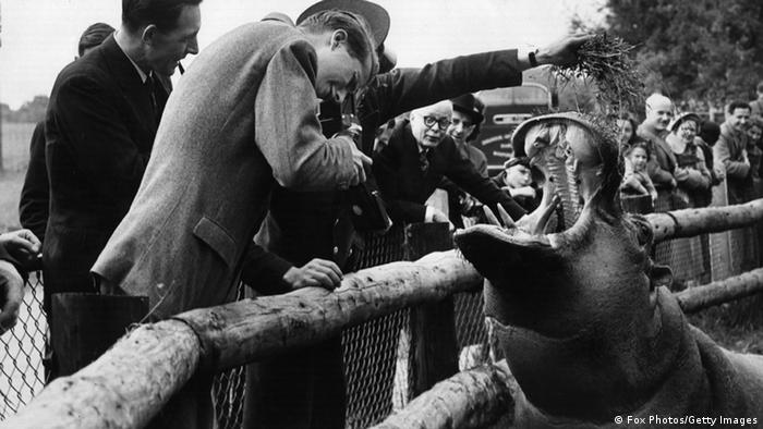 Albert and a hippo in the zoo (photo: Getty)