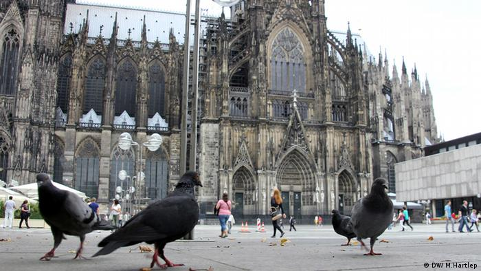 Pigeons in front of the Cologne Cathedral (photo: Michael Hartlepp)