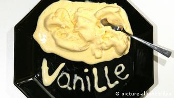 Ванильное мороженое - чемпион