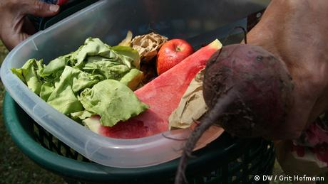 Fruits and veggies in a plastic container(Foto: DW/Grit Hofmann)