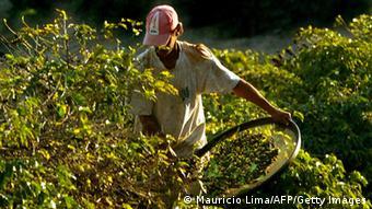 Brasilien Bauernhof