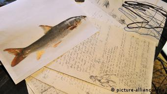 A drawing of a fish, with an open notebook filled with writing Photo: picture-alliance/dpa