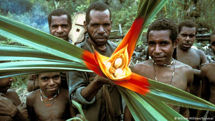 The Yali people of West Papua (Photo: William Milliken/Survival)