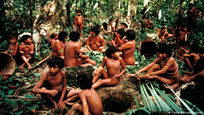 A Yanomami group in Brazil (Photo: Fiona Watson/Survival)