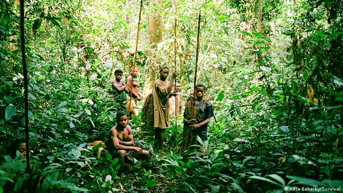 Pygmy people in the Democratic Republic of Congo (Photo: Kate Eshelby/Survival)