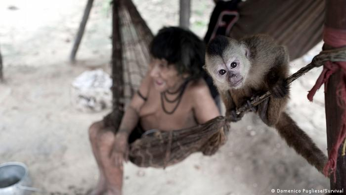 An Awa woman and monkey in Brazil. (Photo: Domenico Pugliese/Survival)