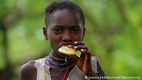 A Hazda child eating wild honey (Photo: Joanna Eede/Survival International)