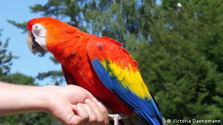 Weltvogelpark Walsrode (Victoria Dannemann)