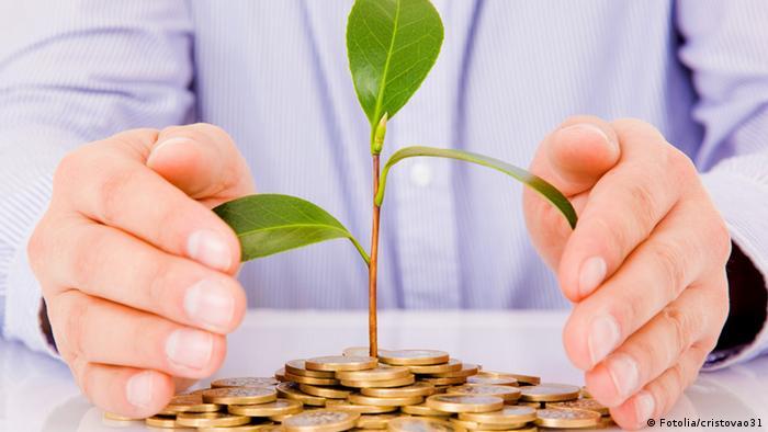 Из горы монет вырастает деревце