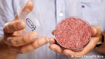In-vitro-Fleisch Overlay (David Parry/PA Wire)