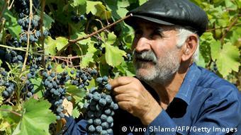 Старый грузинский винодел