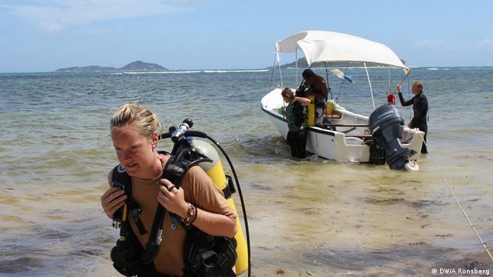 Tauchen Seychellen Natur Tourismus (DW/A.Rönsberg)