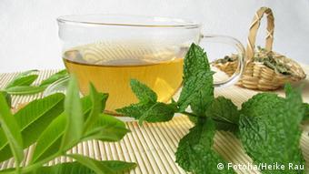 Tee mit Zitronenverbene und Marokko-Minze