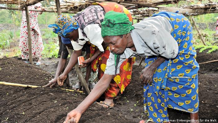 Women planting in East Congo