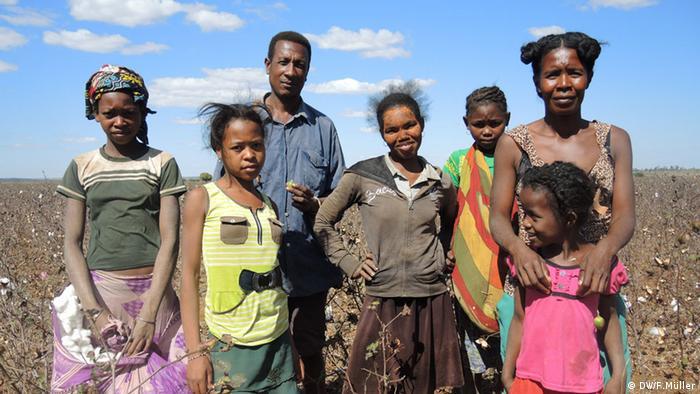 Eliane und ihre Verwandten auf dem Baumwollfeld im Süden Madagaskars (Foto: Friederike Müller/DW)