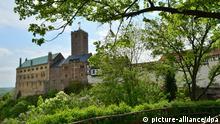 durch grüne Zweige hindurch erblickt man eine Burg, die auf einer Anhöhe steht