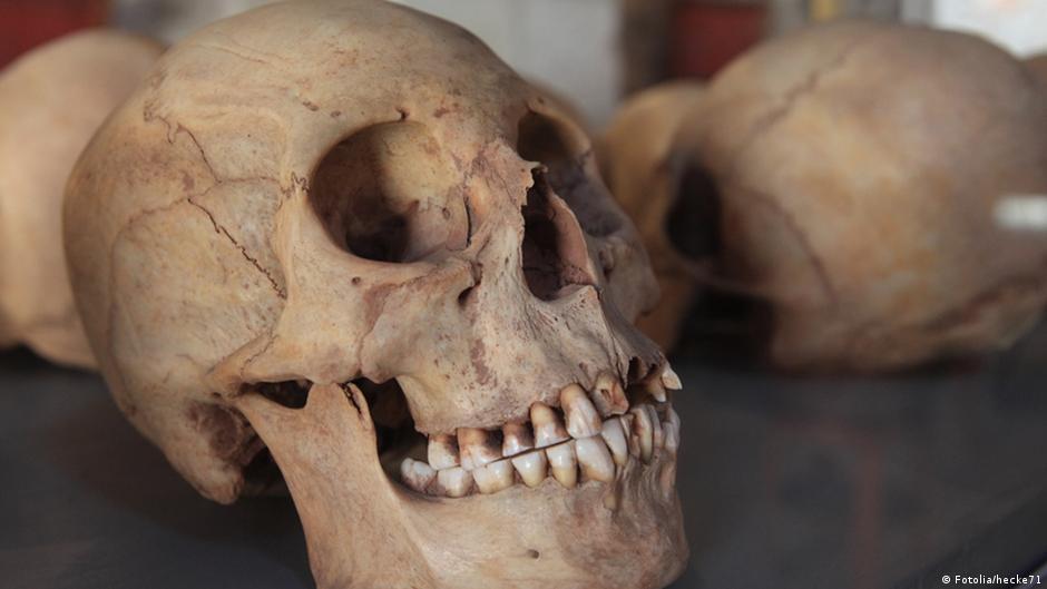 جمجمة للإنسان الأول تكشف تاريخ البشرية | DW | 29.01.2015