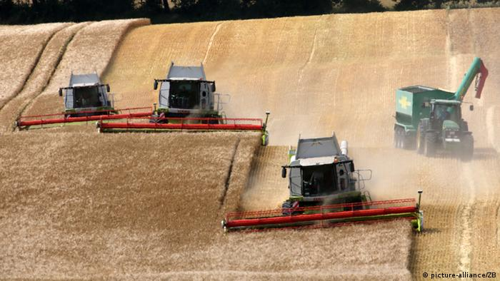 German agricultural exports hit new high