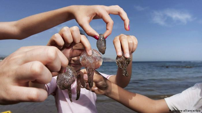 A group of girls hold various jellyfish at a beach in Spain, 13 May 2012. (Photo: EPA/Ángel Medina G.)