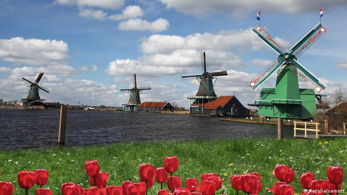 Four windmills on a canal in Holland (Fotolia/samott)