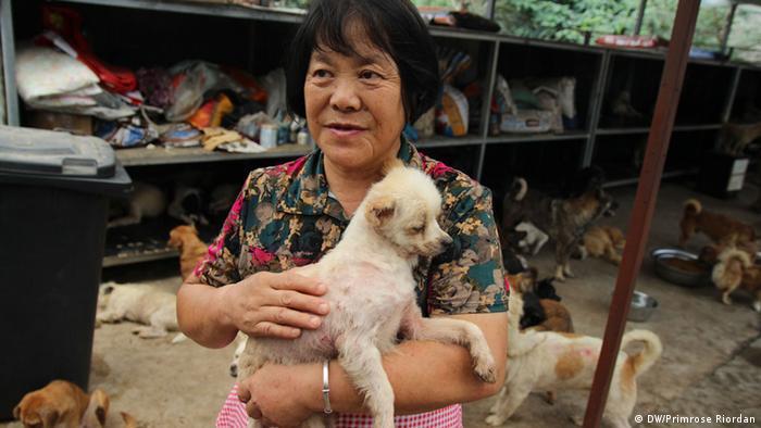 Aktivistica Li Jun iz Pekinga zbrinjava pse koji su bili namijenjeni konzumaciji