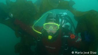 María José Díaz junto algas gigantes. El certificado de buzo científico le permite a esta bióloga marina chilena participar en investigaciones internacionales.
