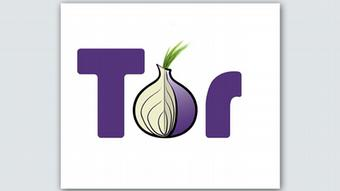 Логотип программы Tor