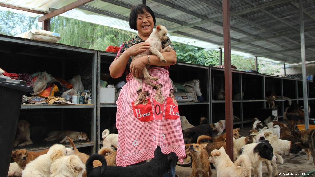 Chinese Woman Killing A Goat - Beautiful Women Kill Sheep ...
