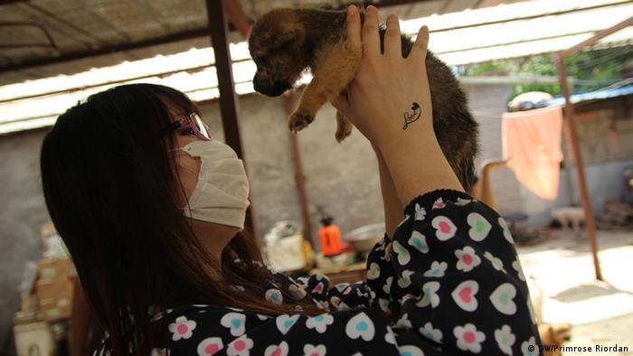 A dog shelter volunteer with a puppy in Beijing (Photo: Primrose Riordan)