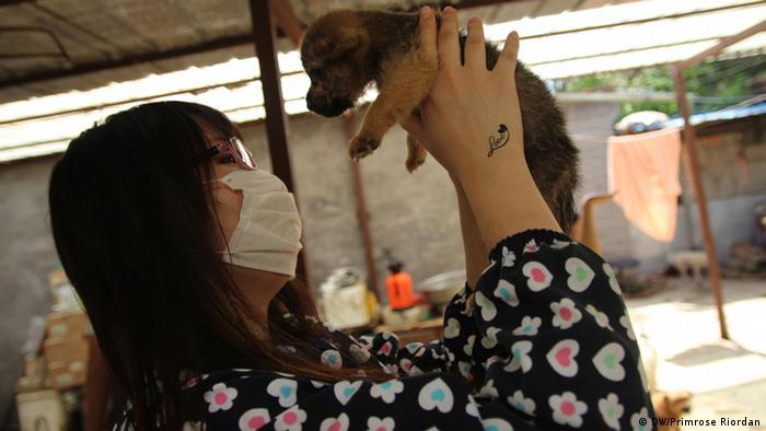 Titel: Hundretterin Hund Beschreibung: In Beijing bedroht der Hundefleisch-Handel das Leben von tausenden Hunden. In einen Tierheim wohnen geretteten Hunden die sonnst auf der Speisekarte gelandet wären. Ein freiwilliger Helfer haltet eine junger Hund.  Schlagwörter: Dogs, China, dog trade, Hunde, Li Jun,  Rechte: Primrose Riordan  Quelle: Die Reporterin Primrose Riordan, hat das Bild im Auftrag der DW gemacht. Rechte unbeschrängt.