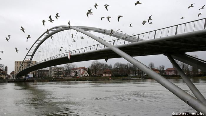 Birds fly next to the Three Countries Bridge