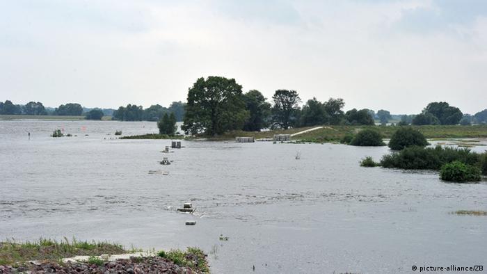Die Elbe bei Lenzen. Nach der größten Deichrückverlegung Deutschlands entwickelt sich auf 420 Hektar neuem Überflutungsraum wieder die Dynamik einer Flussaue.