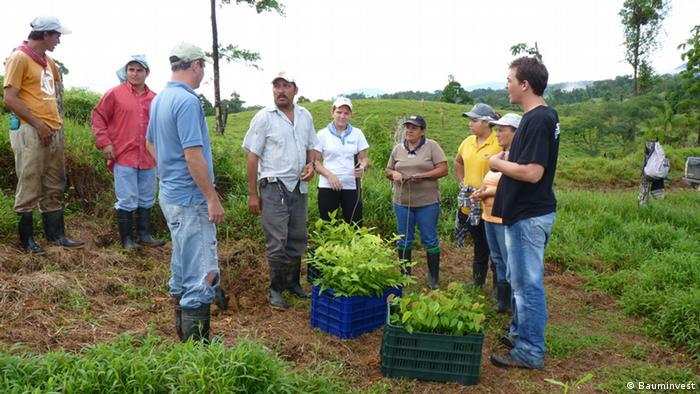 Reforestation as an investment real estate investment clubs uk yahoo