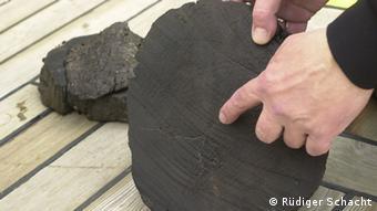 Tronco de árbol sacado del fondo de Báltico.