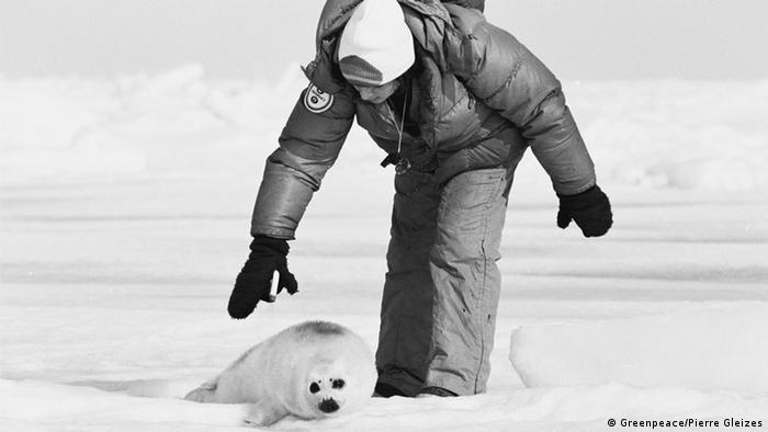 Bildergalerie Greenpeace-Aktionen