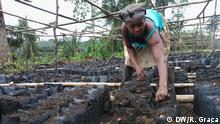 Galerie Anbau und Verarbeitung von Kakao in São Tomé