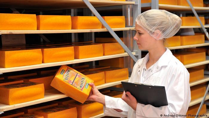 Control de calidad en la producción de quesos.