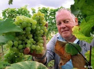 Winemakers will be asked to change the way they operate