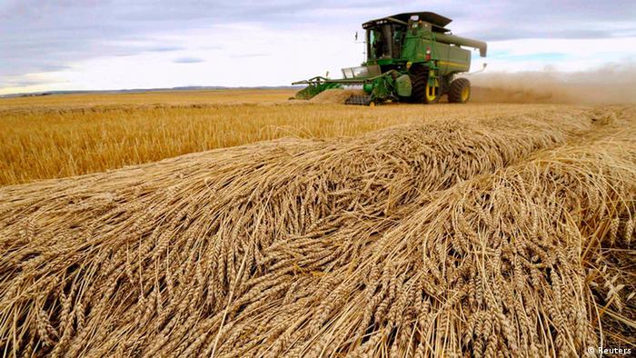Ernte Feld Moderne Landwirtschaft Mähdrescher