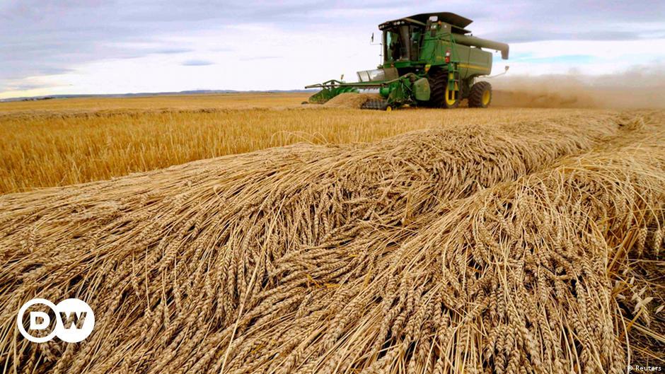 Цены хранения урожая на элеваторах майнкрафт конвейер мод