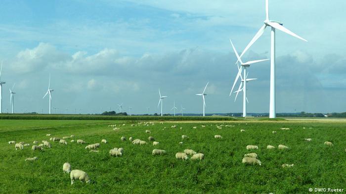 Windkraft in Schleswig-Holstein