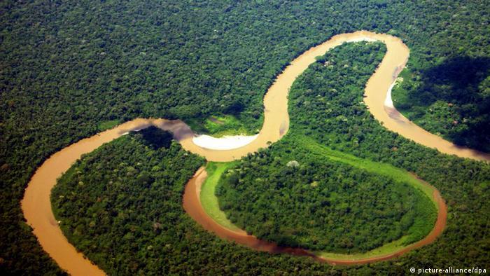 Vista aérea del Parque Nacional Yasuní.